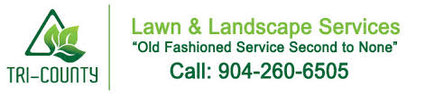 Tri County Landscape by Jacksonville Fl Tri County Lawn And Landscaping Services