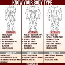 ectomorph body type fitness program how to get big when you are