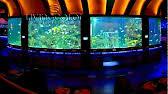 Okeanos Aquascaping Custom Aquariums And Ponds Okeanos Aquascaping Youtube