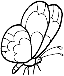 butterfly coloring pages pdf archives throughout butterfly