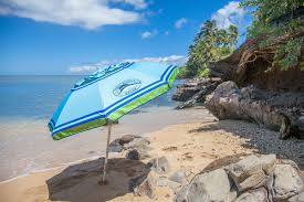 Cheap Beach Umbrella Maui Beach Umbrella Rental The Snorkel Store