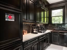 kitchen cabinet awareness kitchen black cabinets black black kitchen cabinets also fascinating black kitchen cabinets canada on kitchen furniture
