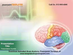 templates for powerpoint brain animated brain anatomy powerpoint template authorstream