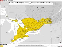 Population Map Of Canada by Rmd 13 01 Regulated Areas For Emerald Ash Borer Eab Agrilus