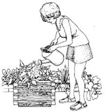 how to garden with hopeless or no soil vegetable gardening