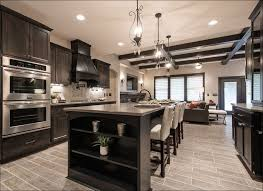 Lacquer Kitchen Cabinets by Kitchen Lacquer Kitchen Cabinets Primer For Kitchen Cabinets