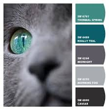 cat u0027s eye beautiful combo to incorporate with gray love it
