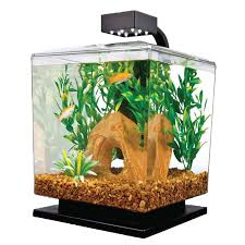 fish tank gallon fish tank best aquarium stirring image design