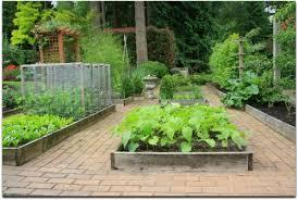 Vegetable Garden Bed Design by Astonishing Design Raised Bed Vegetable Gardening Easy Raised Bed