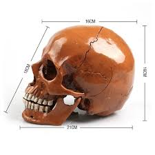 high quality realistic halloween decorations promotion shop for