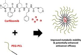 polymer micelle formulations of proteasome inhibitor carfilzomib