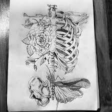 ribcage and butterfly hips looks like an awesome