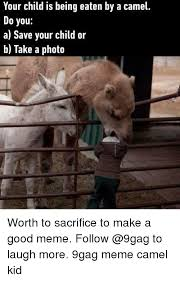 Camel Memes - your child is being eaten by a camel do you a save your child or b