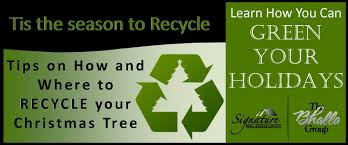 green your holidays recycle your christmas tree