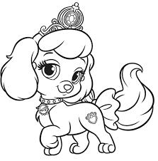 pet coloring pages coloringsuite com