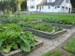 Kitchen Garden Designs 54 Best Vegetable Garden Images On Pinterest Veggie Gardens