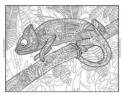 311 Best Coloring Reptile Images On Pinterest Reptile Coloring Pages