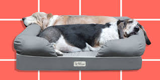 Cats In Dog Beds 11 Best Pet Beds For Dogs And Cats Chic And Comfy Pet Beds They