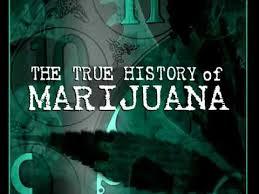 the true history of marijuana trailer