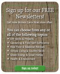succession planting mother earth news earth news and mother earth