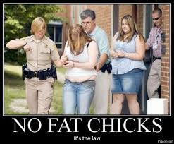 no fat chicks it s the law memes and comics
