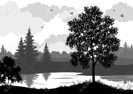 landscape trees river and birds black and grey silhouette