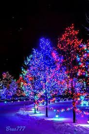 the snowman and bunny christmas tree christmas snowfall gif send