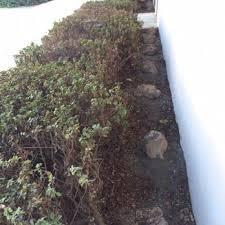 Atlanta Landscape Supply by Sun Ray Landscape Supply Nurseries U0026 Gardening 5044 Peabody Rd