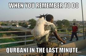 Eid Memes - 11 hilarious eid al adha memes to kick start your celebrations