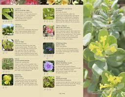 native plants to hawaii hawaiian plant guide on behance