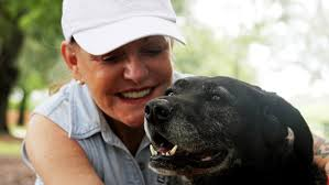first class heiress gives abandoned shelter dog a jet set rescue