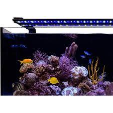 60 watt aquarium light current usa 48 60 orbit ic pro led light loop 92 watts