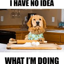 Dog Cooking Meme - 29 cooking memes we can relate to a little too much ecolution blog