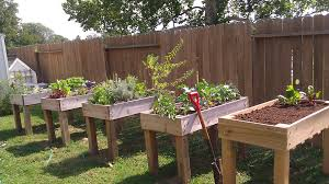 Advantage Of Raised Garden Beds - planting in a raised vegetable garden beds raised vegetable
