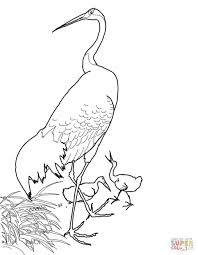 japanese red crowned crane by ohara koson coloring page free