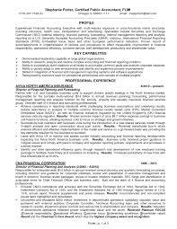 Sample Resume For Financial Controller Resume Resume Financial Controller