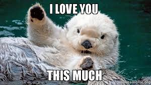 I Love You This Much Meme - i love you this much make a meme