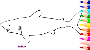 megalodon drawing and coloring page and how to draw megalodon