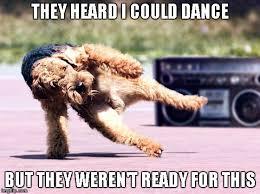 Funny Memes About Dancing - break dancing dog memes imgflip