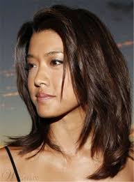 wigs medium length feathered hairstyles 2015 best 25 mid length straight hair ideas on pinterest haircuts