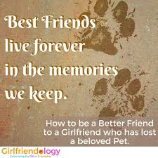 grieving loss of pet how to be supportive when a friend loses a pet