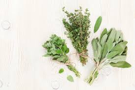 herb culinary herbs and their medicinal uses u2014 nourished kitchen