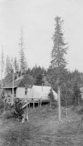 When Was The First House Built Forest Service History