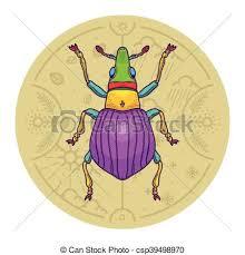 was ist das für ein insekt eine wanze oder was urlaub insekten insekt elemente design wanze käfer vektor leben vektoren