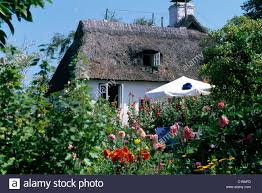 Mexican Thatch Roofing by Thatched Roof Home Thatched Roof House Thatching Thatch Home