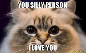 But I Love You Meme - you silly person i love you make a meme