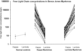 difference between kappa and lambda light chains measurement of free light chains in urine clinical chemistry