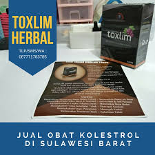 hammer of thor sulawesi barat klinikobatindonesia com agen resmi