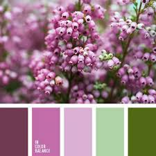 Purple Color Shades 810 Best Color Images On Pinterest Colors Color Balance And