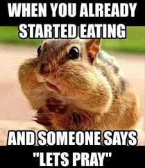 Squirrel Meme - laugh out loud with these funny squirrel memes i can has
